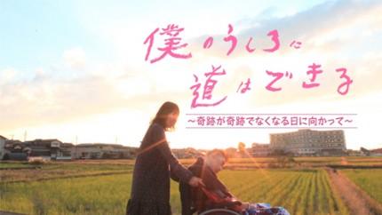 bokumichi_full004